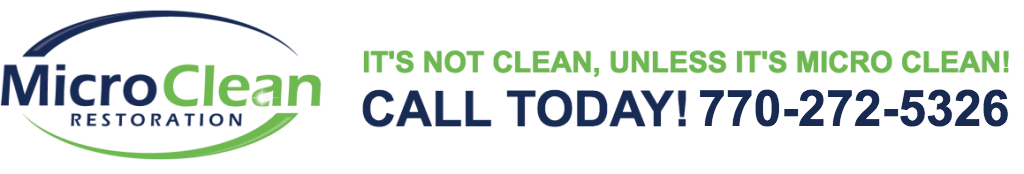 Mold Removal, Viral and Bacteria Cleaning Gwinnett County, Georgia 770-272-5326